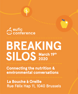 Eufic Conference Breaking Silos